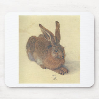 Hare by Albrecht Durer Mouse Pad