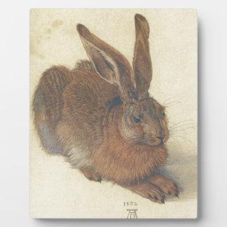Hare by Albrecht Durer Plaque