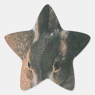 Hare by Albrecht Durer Star Sticker
