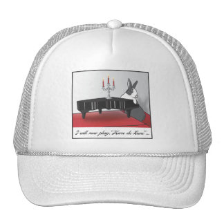 HARE DE LUNE TRUCKER HAT