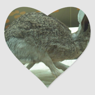 Hare (non-Krishna) running. Taxidermy specimen. Heart Sticker
