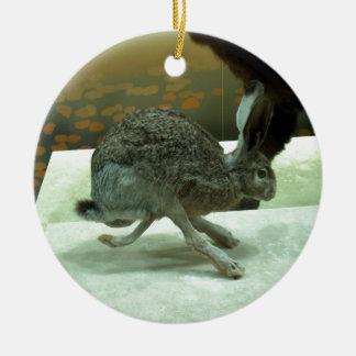 Hare (non-Krishna) running. Taxidermy specimen. Double-Sided Ceramic Round Christmas Ornament