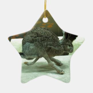 Hare (non-Krishna) running. Taxidermy specimen. Double-Sided Star Ceramic Christmas Ornament