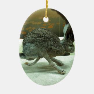 Hare (non-Krishna) running. Taxidermy specimen. Double-Sided Oval Ceramic Christmas Ornament