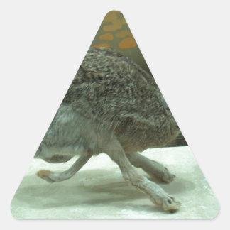 Hare (non-Krishna) running. Taxidermy specimen. Triangle Sticker