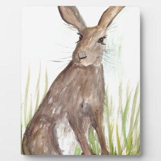 hare plaque