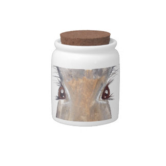 Hare rabbit watercolor candy jar