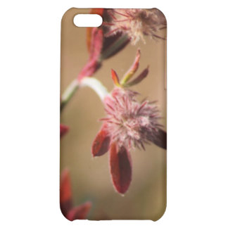 hare s foot trefoil red leaves 2 cover for iPhone 5C