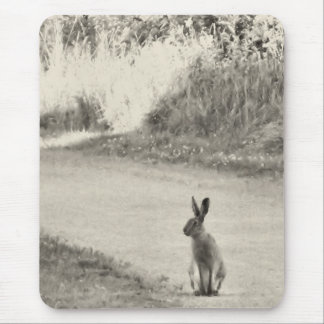 Hare today mouse pad