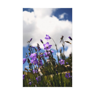 Harebells in the Sandias Canvas Print