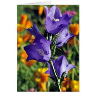 Harebells y amapolas de California púrpuras en Ala Tarjeta De Felicitación