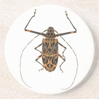 Harlequin Beetle Acrocinus Longimanus Coaster