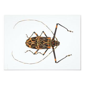 """Harlequin Beetle Acrocinus Longimanus 5"""" X 7"""" Invitation Card"""