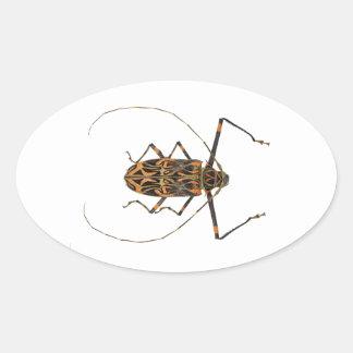 Harlequin Beetle Acrocinus Longimanus Oval Sticker