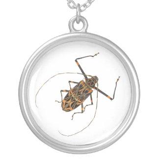 Harlequin Beetle Acrocinus Longimanus Round Pendant Necklace