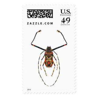 Harlequin Beetle Postage Stamp