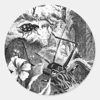 Harlequin Beetles Classic Round Sticker