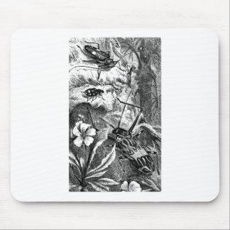 Harlequin Beetles Mouse Pad