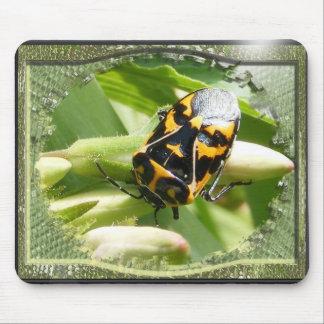 Harlequin Bug ~ mousepad
