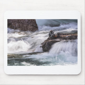 Harlequin duck and waterfall mouse pad