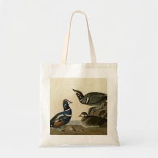 Harlequin Duck Budget Tote Bag