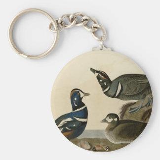 Harlequin Duck Basic Round Button Keychain