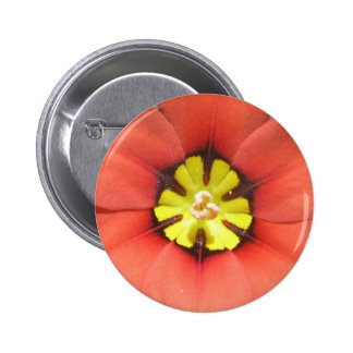Harlequin Flower Button