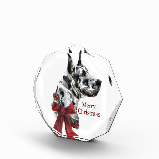 Harlequin Great Dane Christmas Acrylic Award