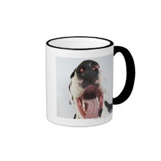 Harlequin great dane con la boca abierta primer taza de café