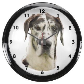 Harlequin Great Dane dog photo Aqua Clock