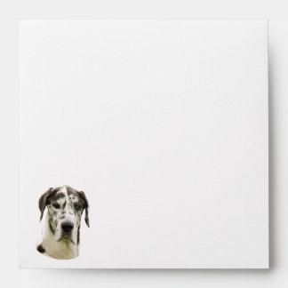 Harlequin Great Dane dog photo Envelope