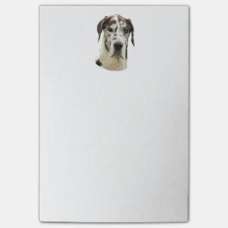 Harlequin Great Dane dog photo Post-it® Notes