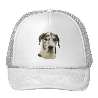 Harlequin Great Dane dog photo Trucker Hat