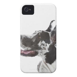 Harlequin great dane Case-Mate iPhone 4 funda