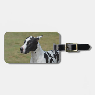 Harlequin Great Dane Luggage Tag