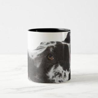 Harlequin Great Dane Mug
