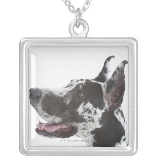Harlequin Great Dane Personalized Necklace