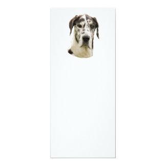 Harlequin Great Dane Portrait Photo 4x9.25 Paper Invitation Card