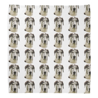 Harlequin Great Dane Portrait Photo Bandana