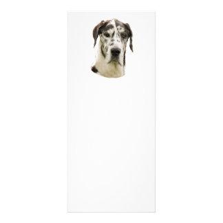Harlequin Great Dane Portrait Photo Custom Invites