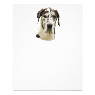 Harlequin Great Dane Portrait Photo Personalized Flyer