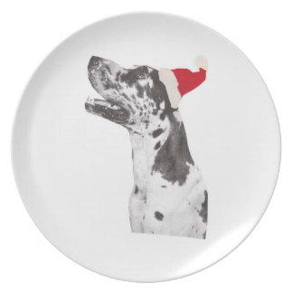 Harlequin Great Dane Santa Hat Plate