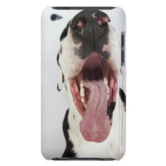 Harlequin Great Dane with open mouth, close-up, Barely There iPod Cover