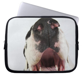 Harlequin Great Dane with open mouth, close-up, Laptop Sleeve