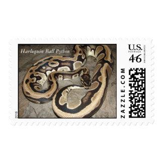 Harlequin Harlequin Ball Python Postage Stamp