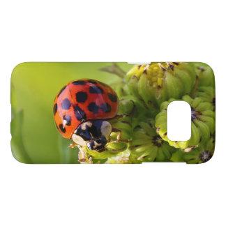 Harlequin Lady Bug Beetle Harmonia Axyridis Samsung Galaxy S7 Case