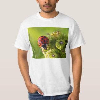 Harlequin Lady Bug Beetle Harmonia Axyridis T-Shirt