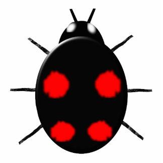 Harlequin Ladybird Photo Sculpture