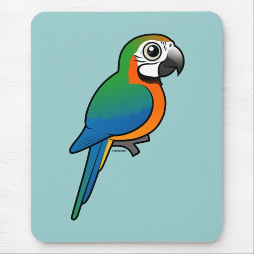 Harlequin Macaw Mouse Pad
