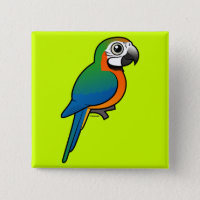 Harlequin Macaw Square Button